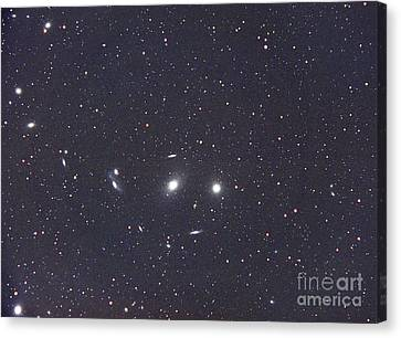 Virgo Galaxy Cluster Canvas Print by Chris Cook