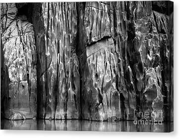 Vishnu Schist Canvas Print by Inge Johnsson