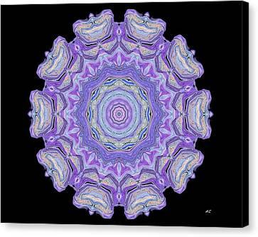 Canvas Print featuring the digital art Vision Wheel by Aliceann Carlton