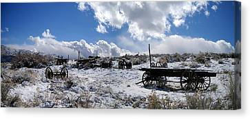 Canvas Print featuring the photograph Visiting The Wild West by Marilyn Diaz