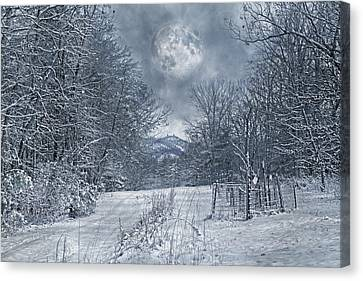 Visual Quiet Canvas Print by Betsy Knapp