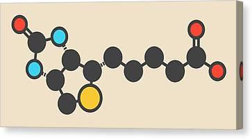 Vitamine Canvas Print - Vitamin B7 Molecule by Molekuul