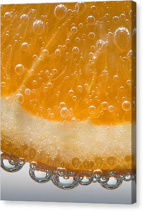 Vitamin C Canvas Print by Susan Candelario