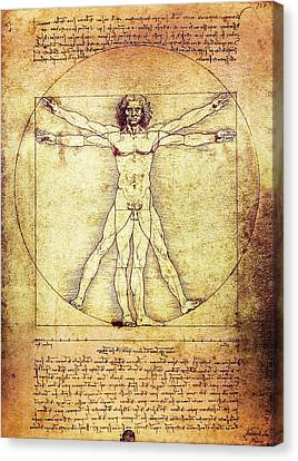 Vitruvian Man  1490 Canvas Print by Daniel Hagerman