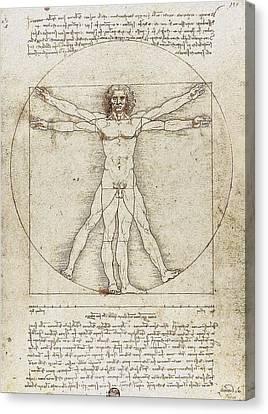 Vitruvian Man By Leonardo Da Vinci Canvas Print by Serge Averbukh