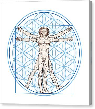 Vitruvian Man In Flower Of Life Canvas Print by Peter Hermes Furian