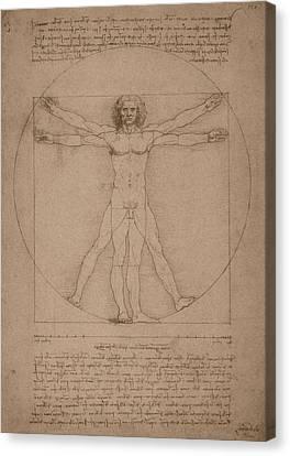 Vitruvian Man  Canvas Print by War Is Hell Store