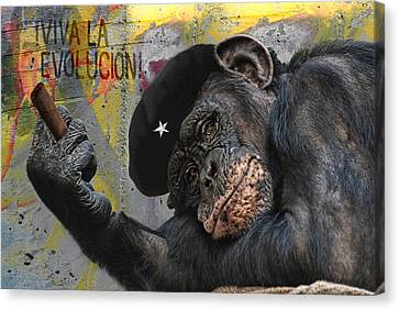 Viva La Evolucion Canvas Print