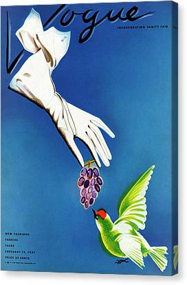 Vogue Cover Illustration Of White Gloves Canvas Print by Raymond de Lavererie