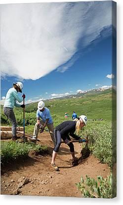 Volunteers Maintaining Hiking Trail Canvas Print