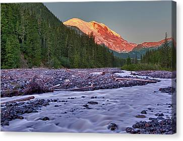 Wa, Mount Rainier National Park, White Canvas Print