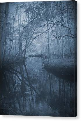 Waccasassa River Canvas Print by Phil Penne