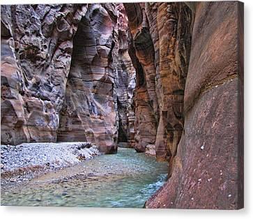 Wadi Mujib Canvas Print by David Gleeson