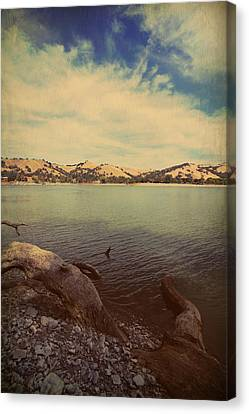 Wading Into The Cold Water Canvas Print by Laurie Search