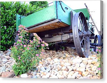 Wagon And Blooms Canvas Print by Larry Bishop