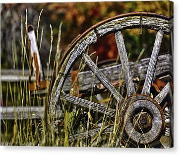 Wagon Down Canvas Print by Scott Campbell