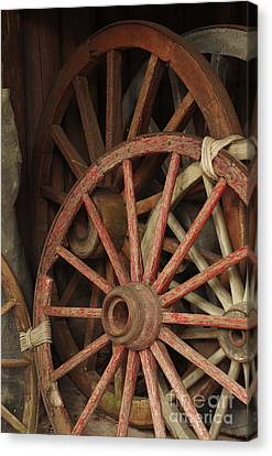 Wagon Wheels Canvas Print by Carlos Caetano