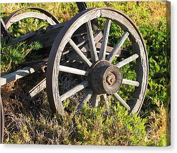 Wagon Wheels Canvas Print by Steven Parker