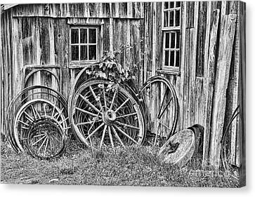 Wagons Lost Canvas Print by Crystal Nederman
