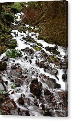 Wahkeena Falls Canvas Print by Cari Gesch