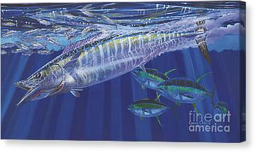 Wahoo Surprise Off0037 Canvas Print by Carey Chen