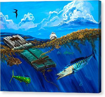 Wahoo Under Board Canvas Print