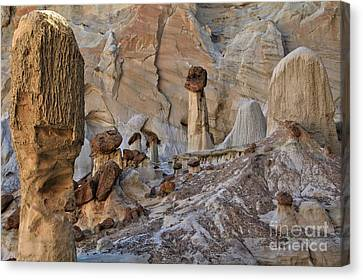 Wahweap Guardian Canvas Print by Adam Jewell