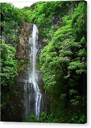 Waikani Falls At Wailua Maui Hawaii Canvas Print by Connie Fox
