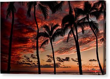 Waikiki Sunset Canvas Print by David Smith
