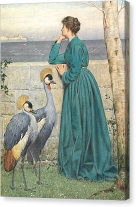 Crane Canvas Print - Waiting And Watching by Henry Stacey Marks