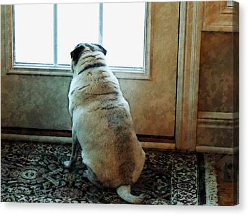 Waiting... Canvas Print by Michael Stowers