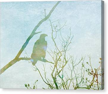 Waiting Eagle Canvas Print by Georgia Fowler