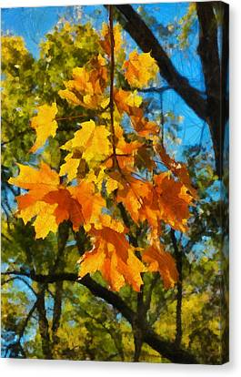 Waiting For Fall Canvas Print by Michael Flood