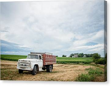 Canvas Print featuring the photograph Waiting For Harvest by Dawn Romine