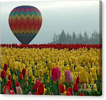 Canvas Print featuring the photograph Waiting For Lift Off by Nick  Boren