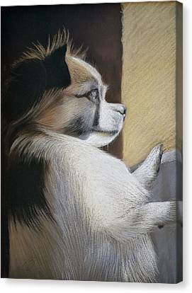Waiting For Mommy Pastel Canvas Print by Ben Kotyuk