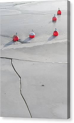 Waiting For Spring # 2 Canvas Print by Holger Spiering