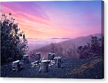 Waiting By The Fire Canvas Print