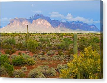 Canvas Print featuring the photograph 16x20 Canvas - Superstition Mountain Light by Tam Ryan