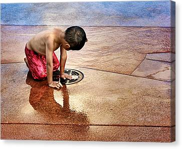 Waiting For Water Canvas Print by Nikolyn McDonald
