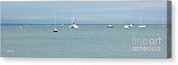 Waiting In Provincetown Canvas Print by Michelle Wiarda