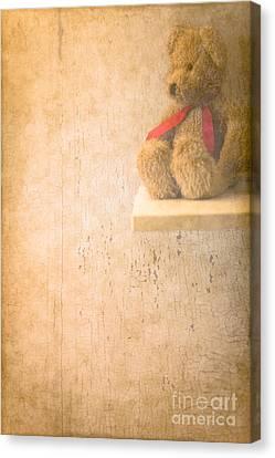 Waiting  Canvas Print by Jan Bickerton