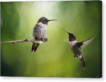 Male Hummingbird Canvas Print - Wake Up Call by Jai Johnson