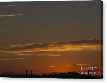 Wake Up Canvas Print by Michael Waters