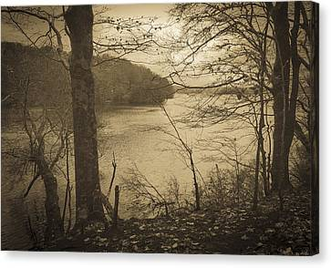Wakeby Pond Fall 2014 Canvas Print by Frank Winters