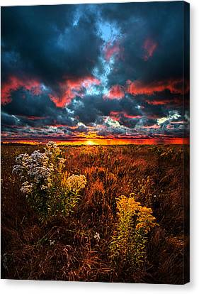 Waking Angels Canvas Print by Phil Koch