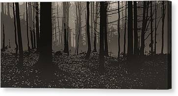 Wald Poster Canvas Print by Jaromir Hron