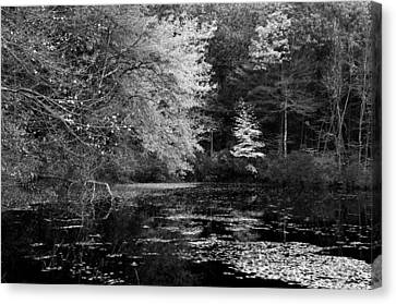Walden Pond Canvas Print by Christian Heeb