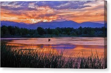 Walden Ponds Sunset Canvas Print