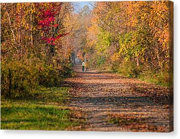 Waling Into Fall Canvas Print by Mary Timman